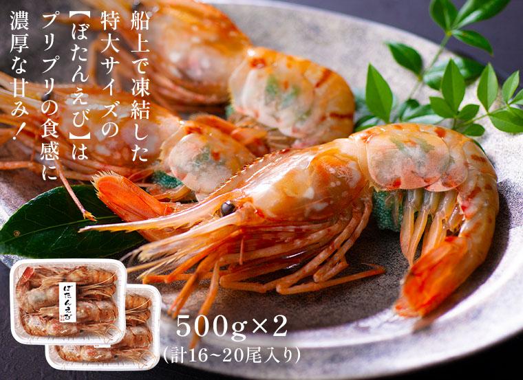 お刺身用特大ボタンえび(500g×2)プリプリの食感でありながら口の中で溶けていくように濃厚な甘み、旨味を味わえます。