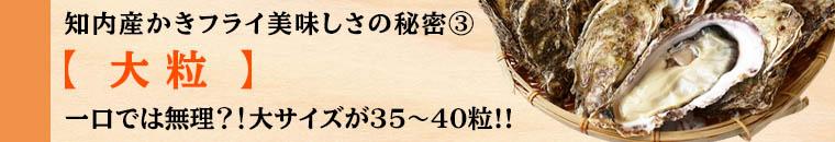 知内産カキフラ美味しさの秘密3「大粒」一口では無理?!大サイズが35~40粒!