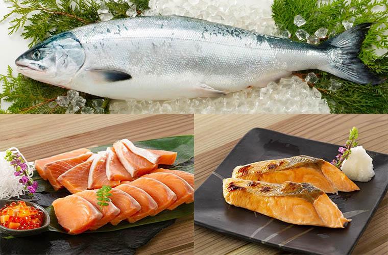 時鮭イメージ