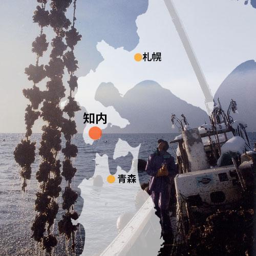 知内町地図・牡蠣漁風景