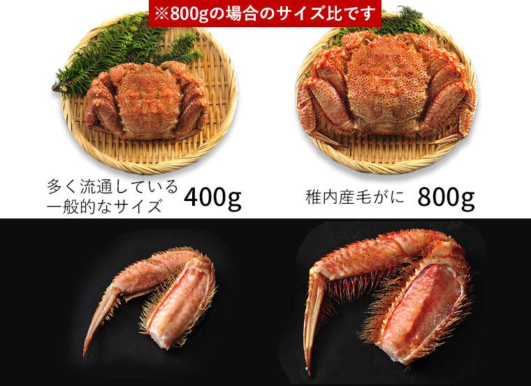 400gと800gの比較