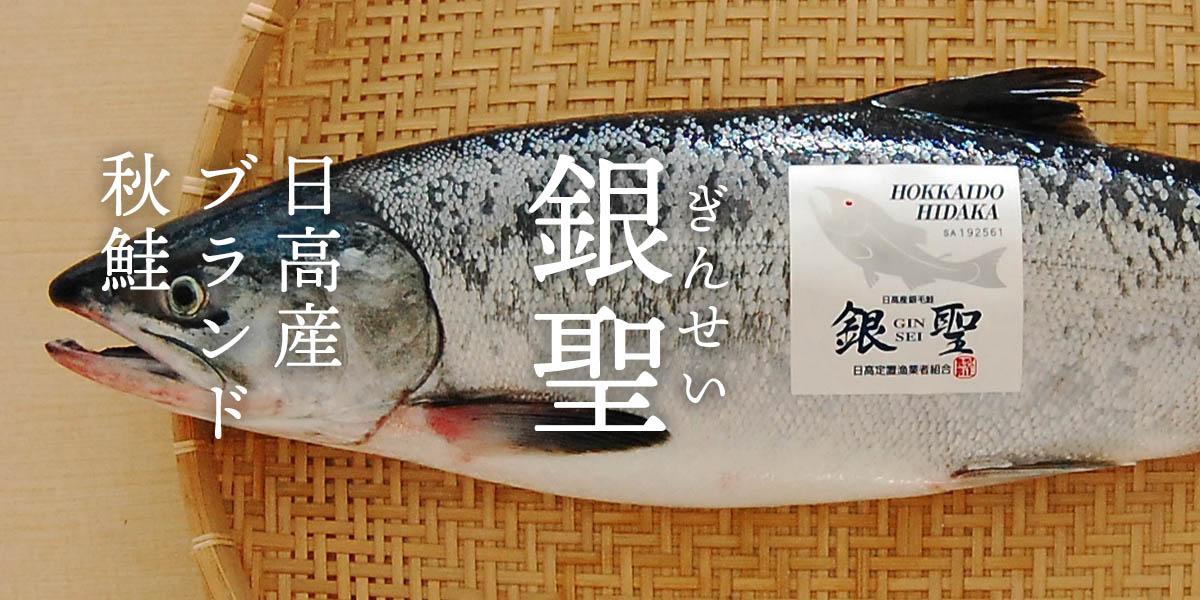 日高産ブランド秋鮭 銀聖