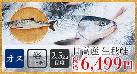 日高産生秋鮭(オス・姿/2.5kg程度)税込6,499円