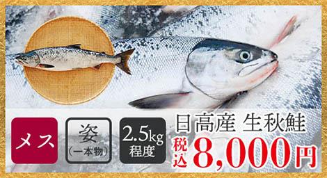 日高産生秋鮭(メス・姿/2.5kg程度)税込8,100円