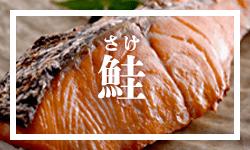 鮭カテゴリー