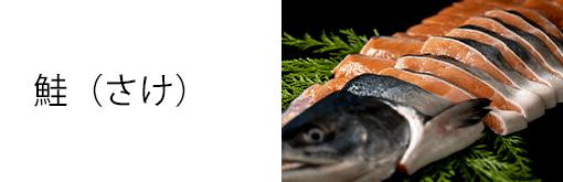 鮭(さけ)
